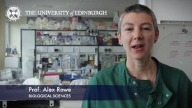 Thumbnail for entry Alex Rowe - Biological Sciences- Research In A Nutshell - School of Biological Sciences -26/06/2012
