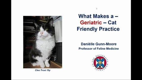 Thumbnail for entry Clinical Club 5th May 2021 - Improving geriatric cat care in the clinic & at home
