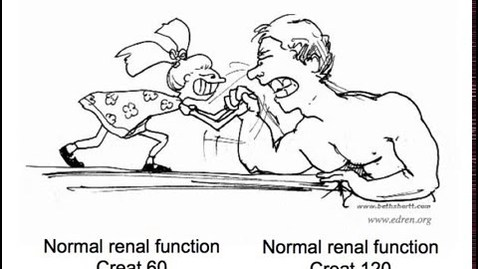 Thumbnail for entry Tests and kidney disease (Renal ICP2)