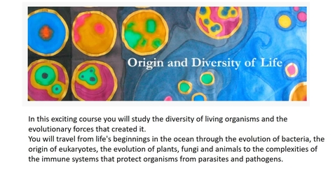Thumbnail for entry Biological Sciences - Origin and Diversity of Life 1