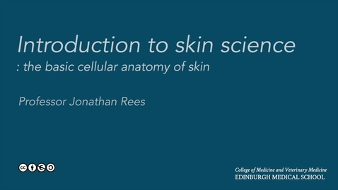 Thumbnail for entry Skin biology: the  basic cellular anatomy