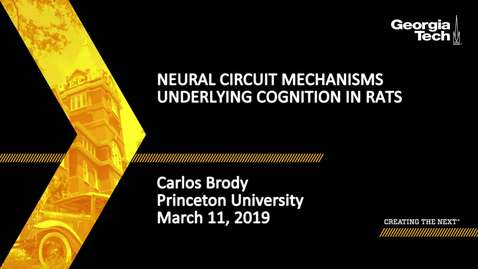 Thumbnail for entry Carlos Brody - Neural Circuit Mechanisms Underlying Cognition in Rats