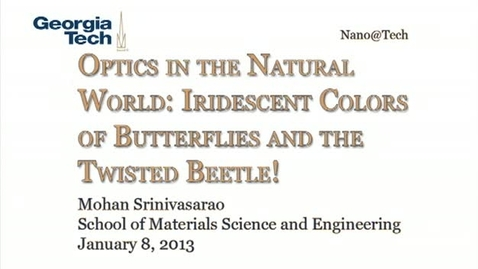 Thumbnail for entry Optics in the Natural World: Iridescent Colors of Butterflies and the Twisted Beetle! - Mohan Srinivasarao