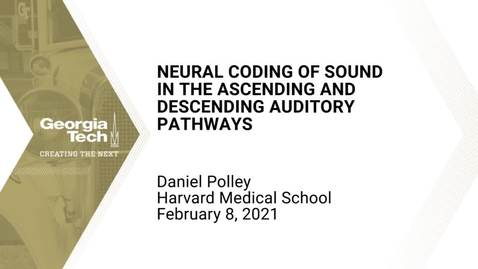 Thumbnail for entry Daniel Polley - Neural coding of sound in the ascending and descending auditory pathways