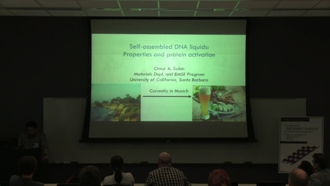 Thumbnail for entry Self–assembled DNA liquids: Properties and protein activation - Omar Saleh