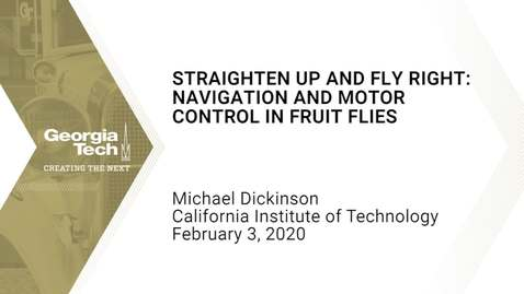 Thumbnail for entry Michael Dickinson - Straighten Up and Fly Right: Navigation and Motor Control in Fruit Flies