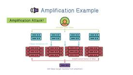 Thumbnail for entry Amplification Example