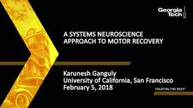 Thumbnail for entry A Systems Neuroscience Approach to Motor Recovery - Karunesh Ganguly