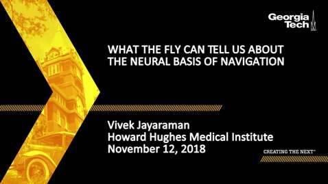 Thumbnail for entry Vivek Jayaraman - What the Fly Can Tell Us about the Neural Basis of Navigation