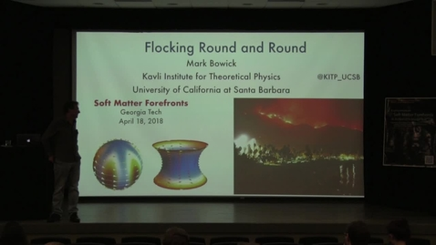 Thumbnail for entry Topology in Polar Flocking and Active Nematics - Mark Bowick