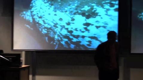 Thumbnail for entry Dolphin-Communication-Starner-Herzing