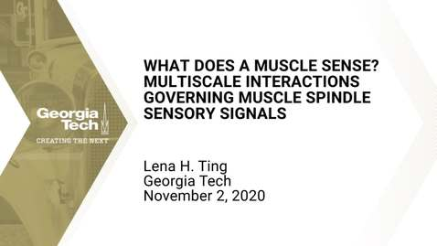 Thumbnail for entry Lena H. Ting - What Does A Muscle Sense? Multiscale Interactions Governing Muscle Spindle Sensory Signals