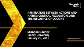 Thumbnail for entry Arbitration between Actions and Habits: Cortical Regulators and the Influence of Cocaine - Shannon Gourley