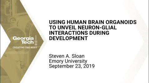 Thumbnail for entry Steven A. Sloan - Using Human Brain Organoids to Unveil Neuron-Glial Interactions During Development