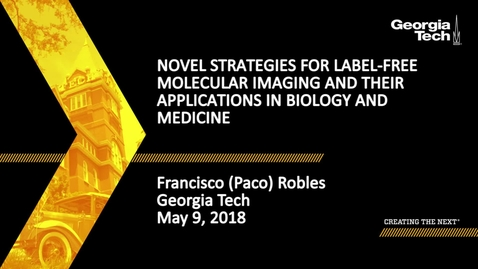 Thumbnail for entry Novel strategies for label-free molecular imaging and their applications in biology and medicine - Francisco (Paco) Robles