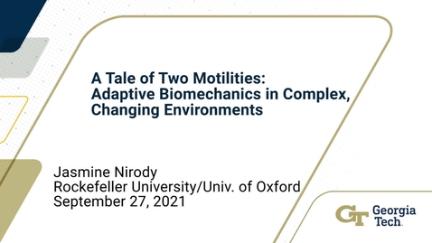 Thumbnail for entry Jasmine Nirody - A tale of two motilities: adaptive biomechanical systems in complex, changing environments