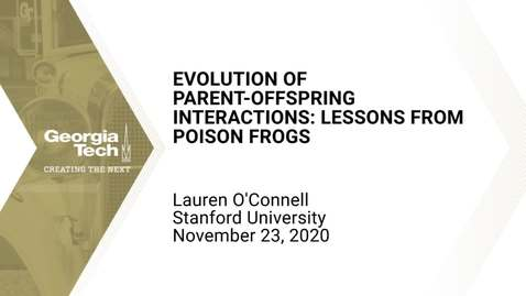 Thumbnail for entry Lauren O'Connell - Ecological resources and the evolution of parent-offspring interactions