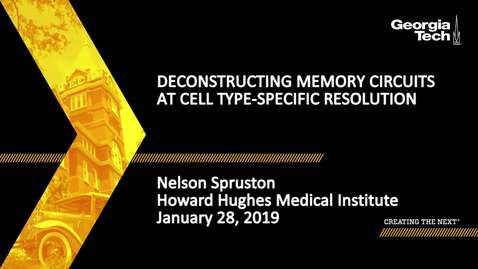 Thumbnail for entry Nelson Spruston - Deconstructing Memory Circuits at Cell Type-specific Resolution