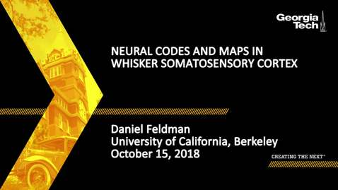 Thumbnail for entry Daniel Feldman - Neural Codes and Maps in Whisker Somatosensory Cortex