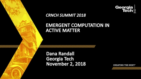 Thumbnail for entry Dana Randall - Emergent Computation in Active Matter