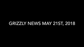 Thumbnail for entry Grizzly News 5.21