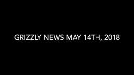 Thumbnail for entry Grizzly News 5.14.18