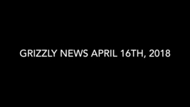 Thumbnail for entry Grizzly News 4.16.mp4