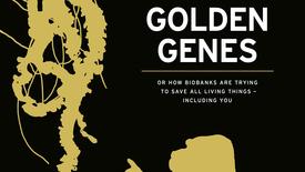 Vorschaubild für Eintrag Goldene Gene