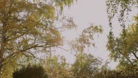 Vorschaubild für Eintrag Garten der Sterne