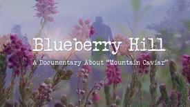 Vorschaubild für Eintrag Blueberry Hill