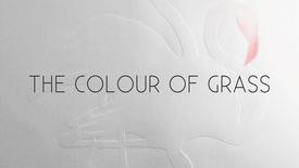 Vorschaubild für Eintrag The Colour of Grass