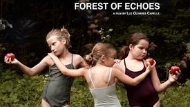 Vorschaubild für Eintrag Wald der Echos