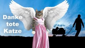 Vorschaubild für Eintrag Danke tote Katze