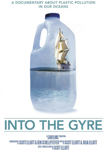 Into the Gyre