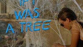 Vorschaubild für Eintrag If I was a tree