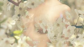 Vorschaubild für Eintrag The Woman Sun
