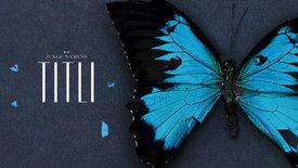 Vorschaubild für Eintrag Ein Junge namens Titli