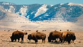 Vorschaubild für Eintrag Milltown, Montana