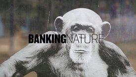 Vorschaubild für Eintrag Banking Nature