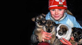 Die Familie mit den Schlittenhunden