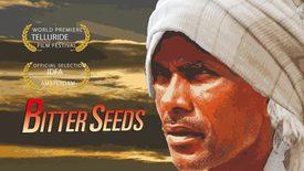 Vorschaubild für Eintrag Bitter Seeds