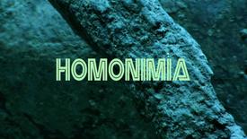 Vorschaubild für Eintrag Homonimia