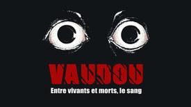 Vorschaubild für Eintrag Vaudou – Voodoo Between Life, Death and Blood