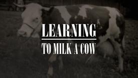 Vorschaubild für Eintrag Lernen eine Kuh zu Melken
