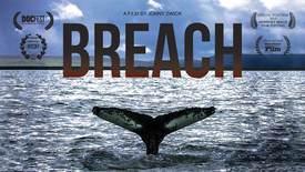 Vorschaubild für Eintrag The Breach