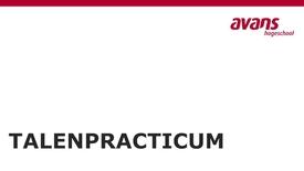 Thumbnail for entry Pitch - Het Talenpracticum - Tim en Christine