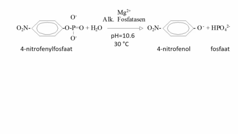 Thumbnail for entry De bepaling van de enzymactiviteit van Alkalische Fosfatase