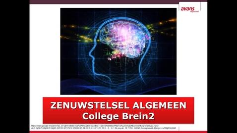 Thumbnail for entry LP4 GNK C-brein2