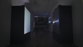 Thumbnail for entry Dan Ran, BFA 2017