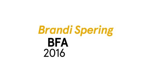 Thumbnail for entry Brandi Spering The Writing Program BFA 2016